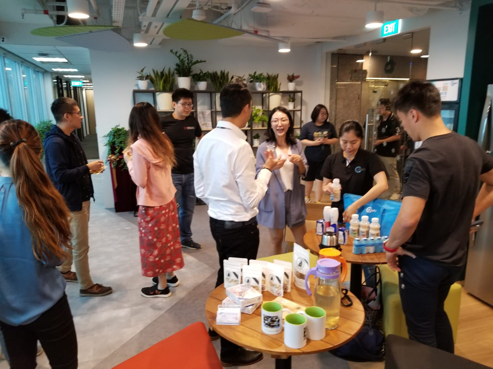 Ginseng and Yogurt tasting
